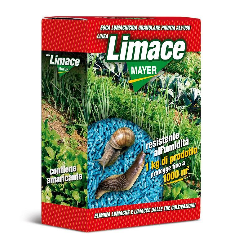 LimaceMayer