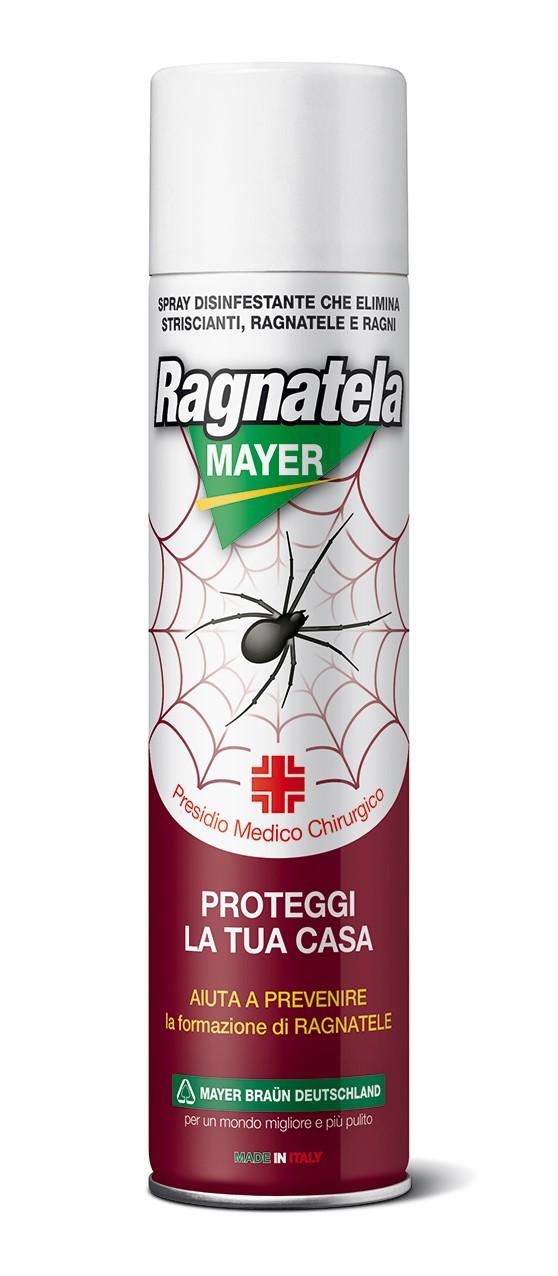 RagnatelaMayer